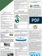 Trabalho de Ecologia e Cidadania