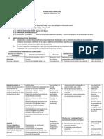 planificacincurricularprimerosbloques-111010100404-phpapp01