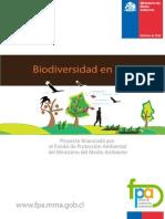 Bio-Diversidad en El Huerto