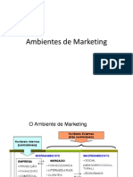 Ambientes de Marketing-Micro e Macro