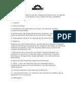 ESTRUCTURA DE PRESENTACION DEL TRABAJO DE INNOVACION.doc
