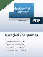 4_Rutas_bioquimicas.ppt