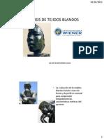 ANALISIS DE TEJIDOS BLANDOS.pdf