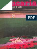 Revista Araucaria de Chile Nº 21