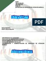 Auditoria Medica 1