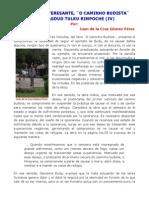 UN LIBRO INTERESANTE, ¨O CAMINHO BUDISTA¨,  DE CHAGDUD TULKU RINPOCHE (IV)