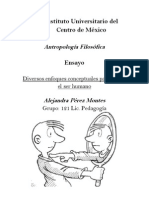 Instituto Universitario del Centro de México