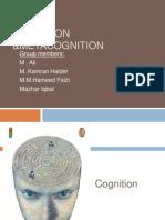 Cognition & Meta Cognition