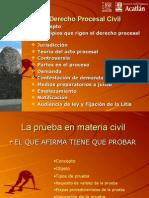 PRUEBAS Derecho Procesal Civil 2013-2 (2)