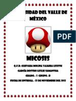 MICOSIS =D