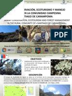IsaelPolylepis_Florencio_Perú