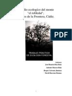 estudio ecologico bosque en españa otras formas de medir