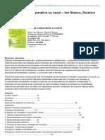 Codfiscal.net-CARTE Finane Corporative Cu Excel Ion Stancu Dumitra Stancu