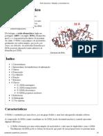 Ácido ribonucleico – Wikipédia, a enciclopédia livre