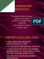 Reanimacion Neonatal[1]