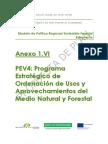 6_PEV4_Programa Estrategico de Ordenacion de Usos y Aprove