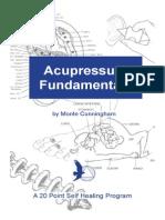 Acuprressurefundamentals.pdf
