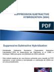 Suppression Subtractive Hybridization 2