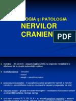 SEMIOLOGIA NERVILOR CRANIENI