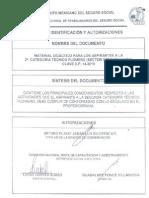 2a CATEGORÍA TÉCNICO PLOMERO Autorizado
