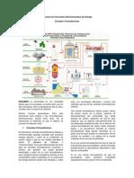 Procesos de Conversión Electromecánica de Energía