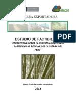Estudio de Factibilidad Perspectivas Para La Industrializacion Del Bambu