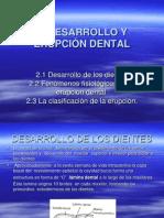 6-1.DESARROLLO Y ERUPCIÓN DENTAL
