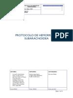 protocolo_hemorragia_subaracnoidea.pdf