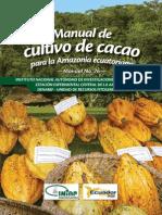 Cult Ivo Cacao Ecuador