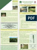 Modelos Agroforestales para Protección cursos agua