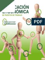 verificacion_ergonomica_2010