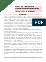 APUNTES DE CLASE IMPRESOS - EMBRIOLOGIA.pdf