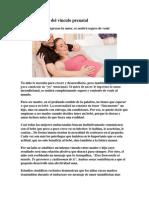 La importancia del vínculo prenatal
