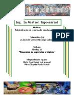 programadeseguridadehigiene-121125155619-phpapp01.docx