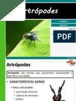 iii-4artrpodes-110827163201-phpapp02