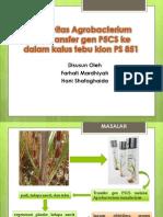 biotek jurnal