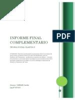 Informe Final Complementario