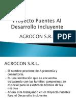 Proyecto Puentes AI  Desarrollo incluyente PRESENTACION.ppt