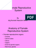 11[2].the Female Reproductive System 2009