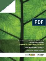 A Educação Básica e o ECA - Beatriz de Basto Teixeira