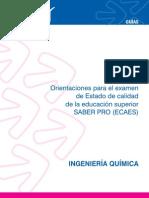 Guia Ingenieria Quimica