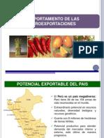 Agro Exportaciones