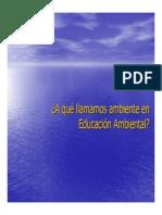 Powerpoint sobre concepciones de ambiente y educación ambiental (1)