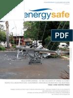 ESV AUTUMN WINTER 2008 ISSUE 12.pdf