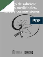 Dialogo de Saberes, Plantas Maestras, Salud y Cosmovisiones