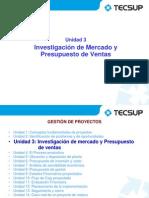 GDP 2013 II - Sem 3 - Investigación de Mercado