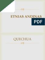 ETNIAS ANDINAS