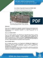 Sistemas OHSAS 180001 pdf online gratis forever.pdf