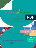 Genetika XII 2