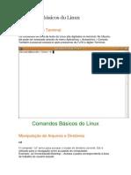Comandos básicos do Linux